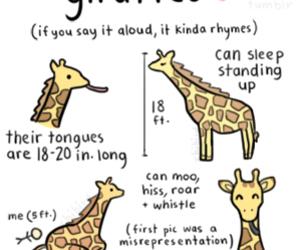 giraffe and chibird image