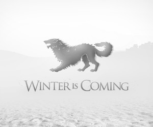 wolf, game of thrones, and house stark image