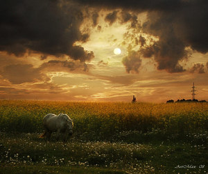 beautiful, clouds, and evening image