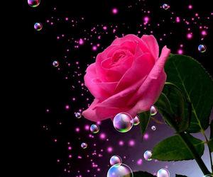 colores, flores, and fondo image