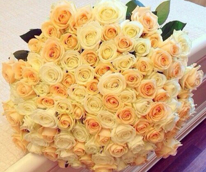 flower, flowers, and bouquet image