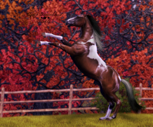 horse and the sims 3 image
