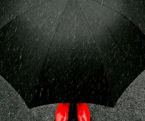 red shoes, umbrella, and rainy day image