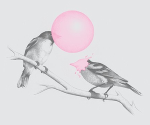 bird, gum, and pink image