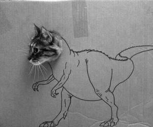 animal, art, and black & white image