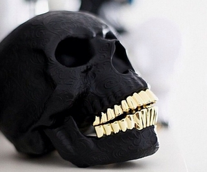 skull, black, and gold image
