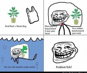 funny, troll, and lol image