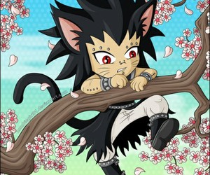 fairy tail and gajeel image