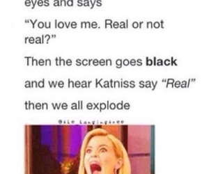 fandom, mockingjay, and funny image