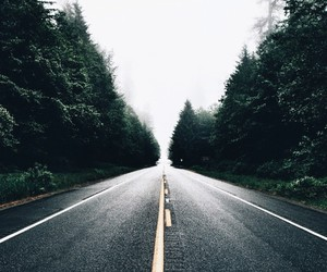 road, photography, and forest image