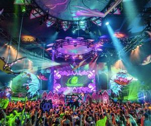 party, rage, and tomorrowworld image