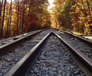 automne, leaf, and railway image