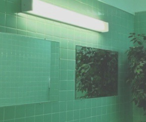 header, green, and twitter image