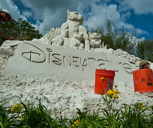 disney, love, and nature image