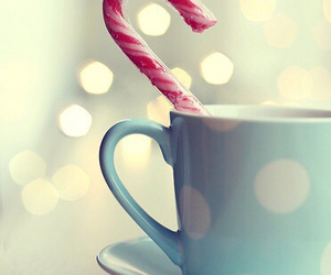 christmas, cup, and candy image