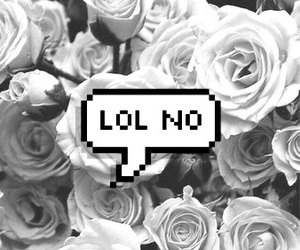 lol, flowers, and no image