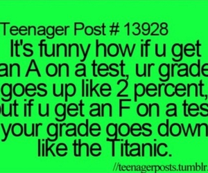 funny, school, and grades image