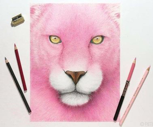 pink and art image
