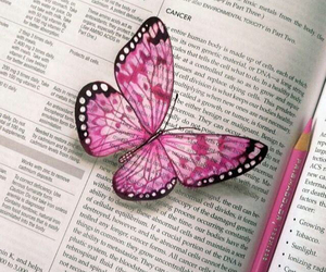 pink, art, and butterfly image