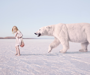 Polar Bear, kids, and pastel image