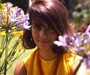 beauty, flowers, and natalie wood image