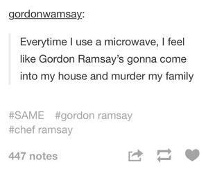 chef, funny, and gordon ramsay image
