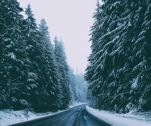 snow, forest, and road image