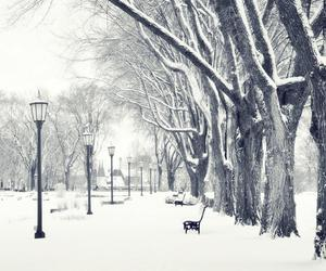 winter, snow, and december image