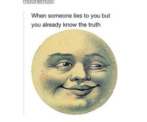 bullshit, lies, and the truth image