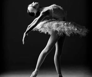 ballerina, ballet, and Swan image