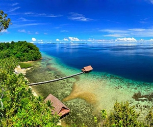 Image by Raja Ampat - West Papua - INDONESIA