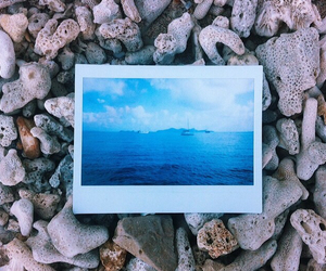 beach, blue, and coral image