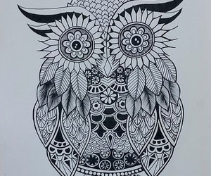 doodle and owl image