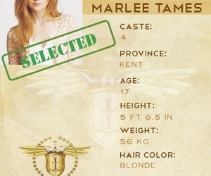 the selection, marlee, and the one image