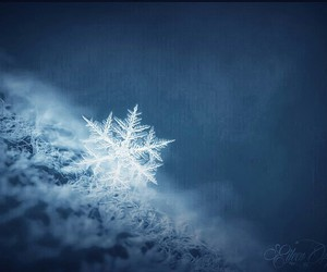 creation, snow, and snowflake image