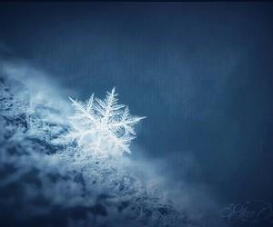 creation, snow, and snowflake image