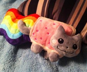 cute, nyan cat, and cat image