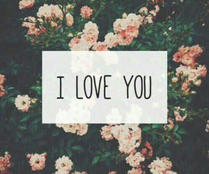 love, flowers, and I Love You image