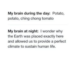 funny, brain, and night image