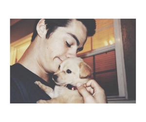 dylan o'brien, puppy, and cute image