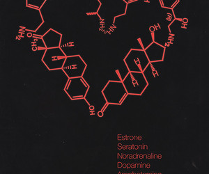 chemistry, molecule, and love image