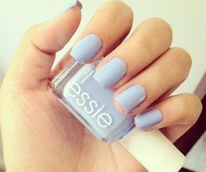 beauty, blue, and light blue image