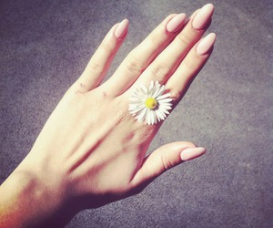 flowers, nails, and girly image