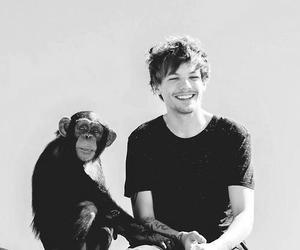 louis, louis tomlinson, and perfect image