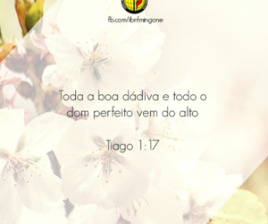 amor, Cristo, and dEUS image