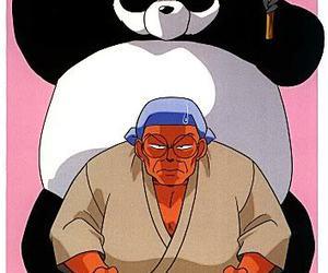 panda and ranma1 2 image