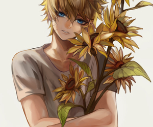 boy, flowers, and simple image