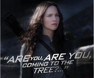 mockingjay, katniss everdeen, and katniss image