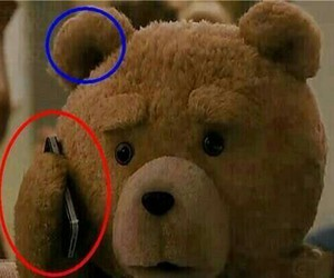TED, funny, and bear image