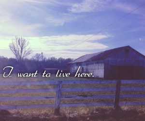 breathe, country, and farm image
